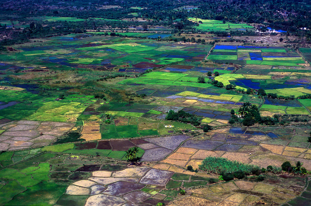 Irrigated fields of the Fianarantsua Highlands Poverty is rife in this region of Madagascar