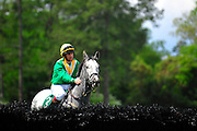 24  March, 2012:  CORSICAN BOY and Ross Geraghty take a peak at the first hurdle at the Aiken Steeplechase.
