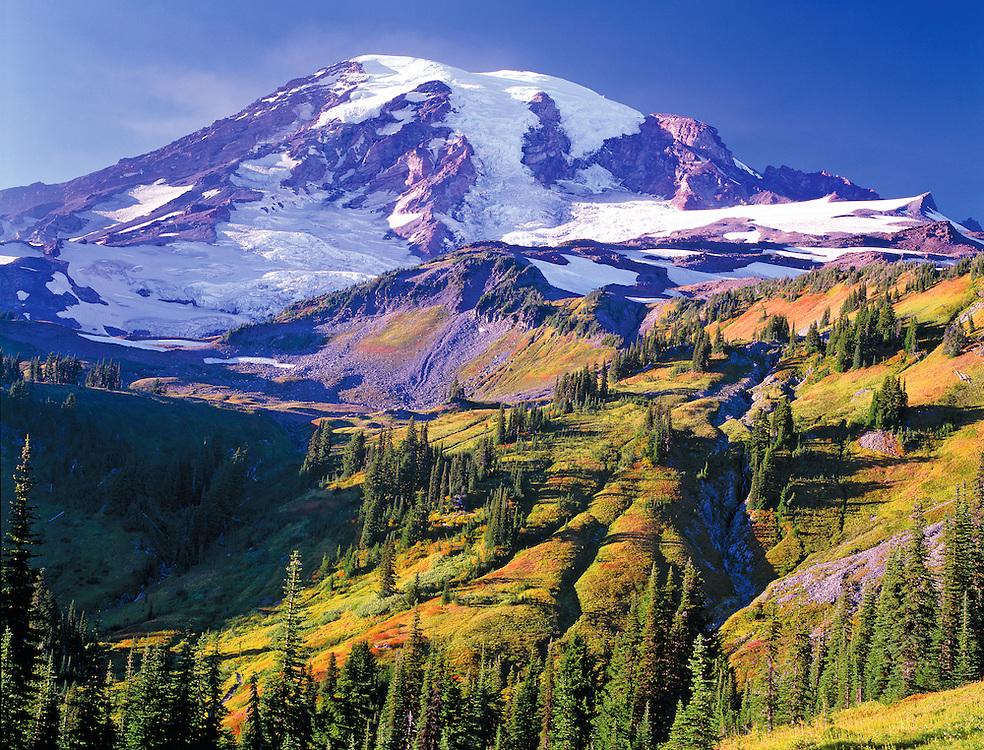 autumn foilage and Mt. Rainier, Mt. Rainire National Park, Washington State, USA