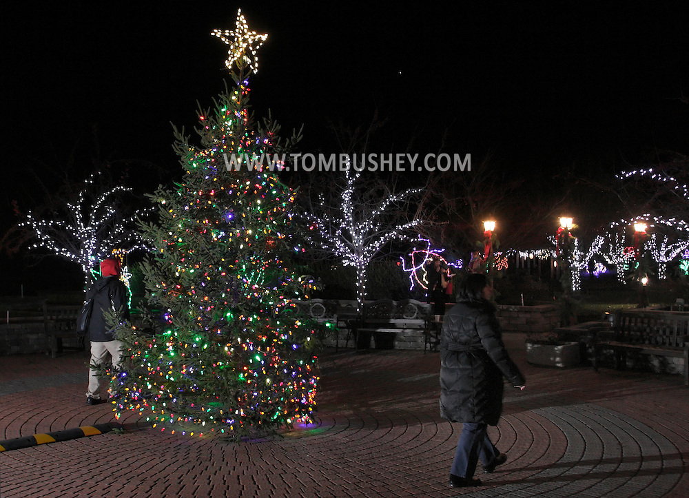 Hamptonburgh, New York - People walk past the Christmas tree after the lighting ceremony in the Orange County Arboretum at Thomas Bull Memorial Park on Dec. 1, 2011. The Holiday Lights in Bloom display, with beautiful, garden-themed light, features in the forms of flowers, animals, and insects is in the background.