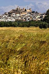 Oria (BR) Veduta dalla campagna
