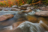 Peak autumn color graces the banks of the Swift River near North Conway, New Hampshire