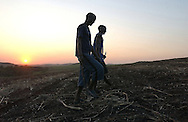 """Sugarcane cutters walk through a field of freshly cut sugarcane after a """"burn"""" of underbrush in a nearby field on Sunday evening, September 10, 2006 in Empangeni, South Africa."""