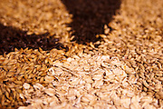 Detail of hops, oats and barley