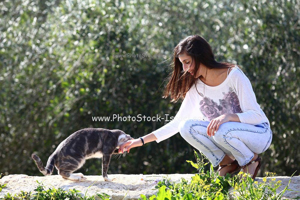 Young twelve year old preteen girl with her cat (model release available)