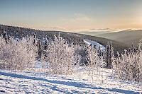 Snowy winter landscape around Fairbanks, Alaska