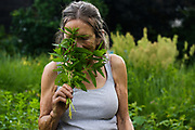 """Helen Miller, of Wilder, smells a bunch of mint she picked for tea after weeding her plot in the White River Community Garden at Ratcliffe Park in White River Junction, Vt., Tuesday, June 15, 2021. """"I just love to go out to the garden, get something to eat and serve it right away,"""" said Miller. """"The flavor just decreases when it goes in the fridge. If you can get it right out of the garden, you've got it made in the shade."""" (Valley News - James M. Patterson) Copyright Valley News. May not be reprinted or used online without permission. Send requests to permission@vnews.com."""