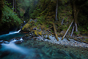 The Nooksack River emerges from a narrow gorge in a series of small waterfalls, Mount Baker-Snoqualmie National Forest, Washington.