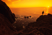 A lone hiker enjoys the sunset at Neahkahnie Sea Cliffs in Oswald West State Park, Oregon.