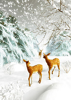 A stunning, snowy scene greets us. We watch as the snow continues to fall at a steady rate. Three deer are moving gently through the snow. They are moving together, and you would think they might move quickly. After all, it stands to reason that the snow could get worse, as the day goes on. Yet they seem to be quite at ease with everything that is going on. They are in a state of relaxation. This is a beautiful scene that brings to mind Christmas. Available in the form of cards, or on a variety of interior home décor products. BUY THIS PRINT AT<br />