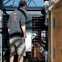 Frankrijk Lieusaint,21 mei 2015.<br /> Stichting AAP die zich inzet voor opvang en welzijn van verwaarloosde dieren waaronder diverse apensoorten haalt nu verwaarloosde 2 tijgers en 2 leeuwen op bij een failliete circus in het plaatsje Lieusaint in de buurt van Parijs om ze vervolgens een betere toekomst te geven in opvangcentrum Primadomus in de buurt van Alicante Spanje.<br /> Op de foto: Een totaal uitgeputte tijger in dierenopvang Primadomus Alicante na een lange tocht vanuit Frankrijk<br /> <br /> <br /> <br /> Foto: Jean-Pierre Jans