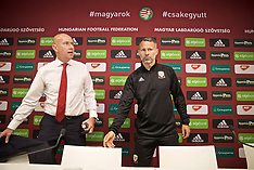 2019-06-10 Hungary v Wales MD-1