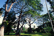 Foster Botanical Gardens, Honolulu, Hawaii<br />