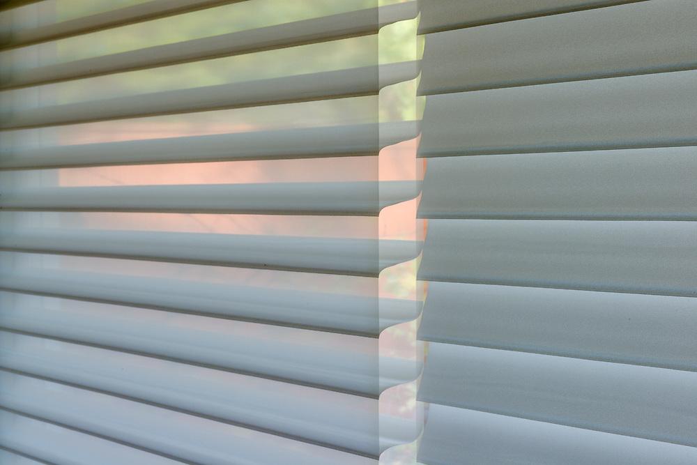 Living room blinds, autumn, November, private residence, Tacoma, Washington, USA