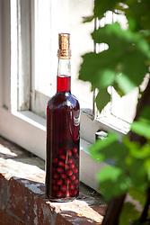 Bottle of Damson gin on a window ledge. Prunus domestica