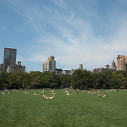 The Great Lawn in Central Park is a popular gathering place at all times of year.