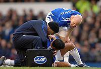 Photo: Paul Greenwood.<br />Everton v Aston Villa. The Barclays Premiership. 11/11/2006. Everton's Andy Johnson consoles Tim Cahill.