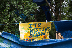 Denham, UK. 13 July, 2020. A banner reading 'It's Nesting Season' at Denham Protection Camp, which has been created by environmental activists from HS2 Rebellion in order to try to hinder or prevent the construction of the £106bn HS2 high-speed rail link which will remain a net contributor to CO2 emissions during its projected 120-year lifetime.