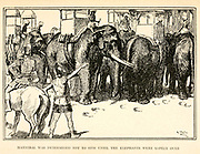 Hannibal was determined not to stir until the elephants were safely over illustrating the Story ' Hannibal ' From the book '  The red book of heroes ' by Mrs. Lang, Edited by Andrew Lang, illustrated by A. Wallis Mills, Published by Longmans, Green, and Co. New York, London, Bombay and Calcutta in 1909