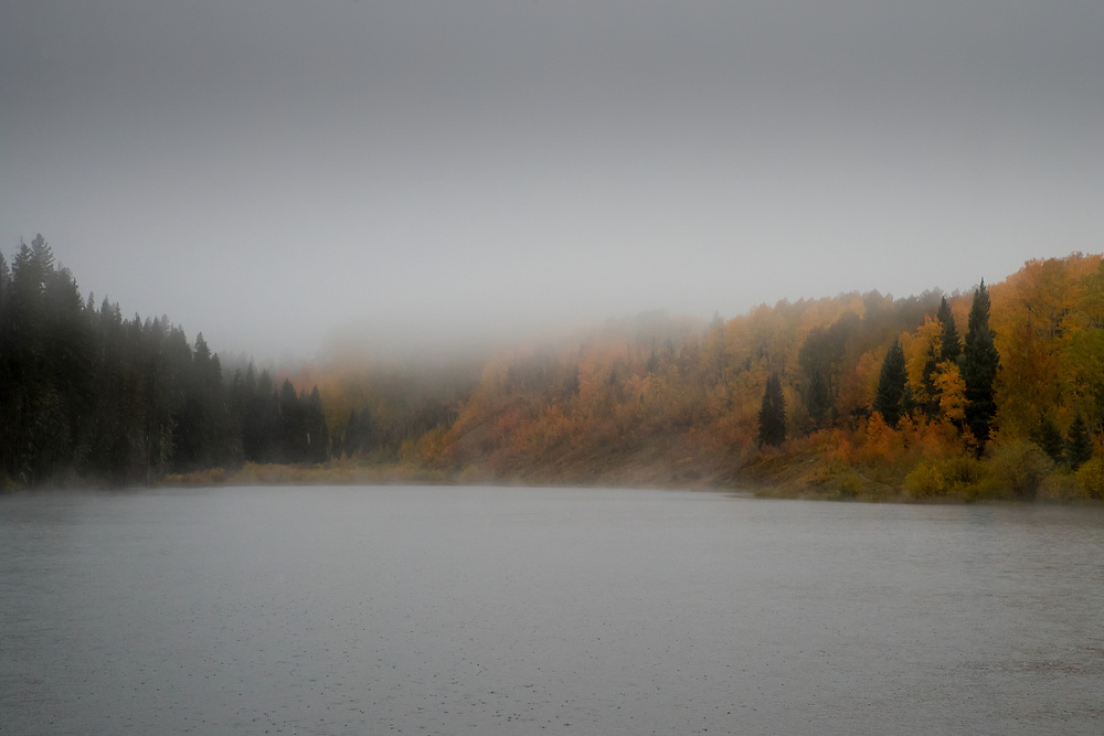 RAIN, FOG AND AUTUMN COLOR, WOODS LAKE, UNCOMPAHGRE NATIONAL FOREST, COLORADO