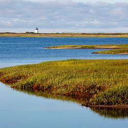 A salt marsh in Provincetown, Massachusetts.