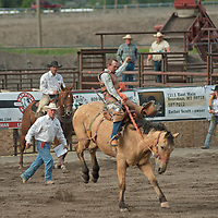 A bronco rider tries to stay atop his mount at the 2011 Bozeman Stampede in Bozeman, Montana.