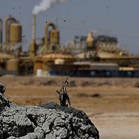 Salton Sea and Geothermal