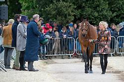 Klimke Ingrid, (GER), Horseware Hale Bob<br /> First Horse Inspection - Mitsubishi Motors Badminton Horse Trials <br /> Badminton 2015