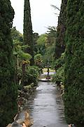 Russia, Sochi, Arboretum (Botanical Gardens)