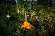 JUNE 10, 2015: Thursday, July 16 (internship sites)<br /> Refugee Agriculture Partnership Program at 7th Street Farm (available all day)<br /> 3205 7th Street<br /> (hands-on opportunities and interacting with community members/workers)<br /> <br /> People's Garden / Louisville Grows (available all day)<br /> 461 Northwestern Parkway (between Northwestern and 44th)<br /> (hands-on opportunities and interacting with community members/workers)<br /> <br /> Seed Capital Kentucky (2 – 3 for model set-up; afterwards other possibilities)<br /> (this one can be both the exterior of the building, a close-up of people inspecting the 3D model of a project in process —large food hub)<br /> <br /> Friday, July 17  (group sites)<br /> Fern Creek High School Garden (9 a.m. - 1 p.m.)<br /> 9115 Fern Creek Road<br /> (hands-on opportunities, working with the high schoolers present, lunch-time cookout)<br /> <br /> Food Literacy Project (1:30 – 4:30 p.m.)<br /> 9001 Limehouse Lane (The space is on the Field Day Family Farm land)<br /> (hands-on opportunities and interacting with community members/workers)<br /> <br /> Photo by William DeShazer