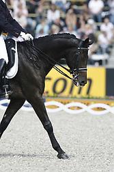 Devroe Jeroen - Paganini<br /> World Equestrian Games Aachen 2006<br /> Photo © Hippo Foto