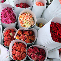 South America, Ecuador, Cayambe. Fresh Roses Packaged for Export at Rosadex Plantation.