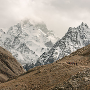 """Down from the Irshad Pass (4950m) into Pakistan's Chapursan valley. Guiding and photographing Paul Salopek while trekking with 2 donkeys across the """"Roof of the World"""", through the Afghan Pamir and Hindukush mountains, into Pakistan and the Karakoram mountains of the Greater Western Himalaya."""