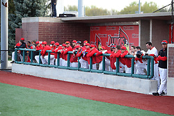 21 April 2015:  Redbird Dugout during an NCAA Inter-Division Baseball game between the Illinois Wesleyan Titans and the Illinois State Redbirds in Duffy Bass Field, Normal IL