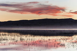 Pond at dusk, Bosque del Apache, National Wildlife Refuge, New Mexico, USA.