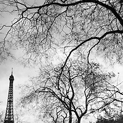 The Eiffel Tower, Paris, France. Nicknamed La dame de fer, the iron lady,  is located on the Champ de Mars in Paris. Built in 1889, it has become both a global icon of France and one of the most recognisable structures in the world. The tower is the tallest building in Paris and the most-visited paid monument in the world; millions of people ascend it every year. Named for its designer, engineer Gustave Eiffel, the tower was built as the entrance arch to the 1889 World's Fair. The tower stands 324 metres (1,063 ft) tall, about the same height as an 81-storey building.  Paris, France. 28th February 2011. Photo Tim Clayton