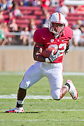 Stanford University Cardinals' Remound Wright (22) carries the ball against San Jose State in Palo Alto, Calif., Sept. 3, 2011.  Stanford (7) beat San Jose State 57-3.  (Spartan Daily/Stan Olszewski)