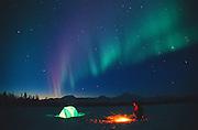Alaska. Petersville. Winter camping and northern lignts (aurora borealis).