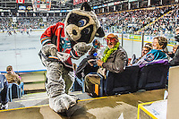 KELOWNA, CANADA - MARCH 27: Rocky Racoon, the mascot of the Kelowna Rockets hams it up with fans during round 1 of playoffs on March 27, 2015 at Prospera Place in Kelowna, British Columbia, Canada.  (Photo by Marissa Baecker/Shoot the Breeze)  *** Local Caption *** Rocky Racoon;