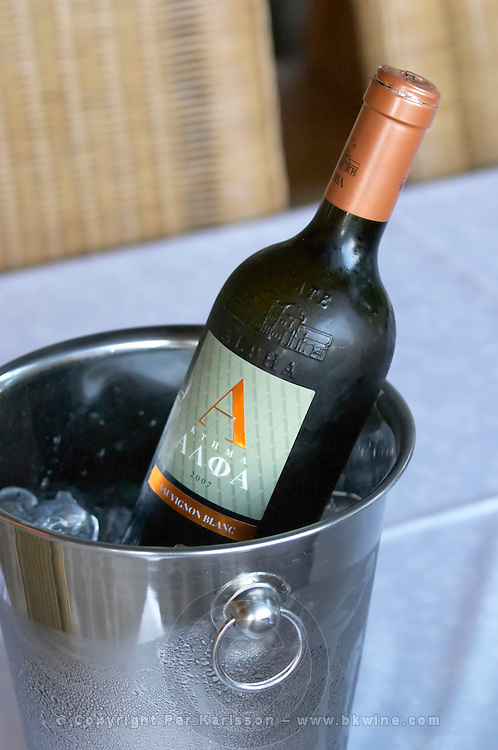 Bottles in ice bucket. Sauvignon blanc. Alpha Estate Winery, Amyndeon, Macedonia, Greece