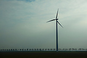 """Windmill in windfarm, Netherlands, one of many visible form of sustainable energy to be seen in the Dutch landscape. This mage can be licensed via Millennium Images. Contact me for more details, or email mail@milim.com For prints, contact me, or click """"add to cart"""" to some standard print options."""