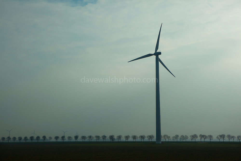 "Windmill in windfarm, Netherlands, one of many visible form of sustainable energy to be seen in the Dutch landscape. This mage can be licensed via Millennium Images. Contact me for more details, or email mail@milim.com For prints, contact me, or click ""add to cart"" to some standard print options."