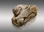 Alaca Hoyuk - Hittite lion sculpture corner Stone . Andesite. Alacahoyuk, 1399 - 1301 B.C. Anatolian Civilisations Museum, Ankara, Turkey.<br /> <br /> Corner stone with sculpted lion, bull and winged sun disk. It was discovered at the right side of the Alacahoyuk sphinx door. The lion puts his front legs on a small bull. There is a Hittite winged sun disk on the abdomen of the lion, which can be seen from a lower location. The position of the sun course indicates that the stone is situated in a high place.<br /> <br /> Against a brown gray background.