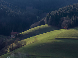 Farmhouse and field at Black Forest, Baden-Wuerttemberg, Germany