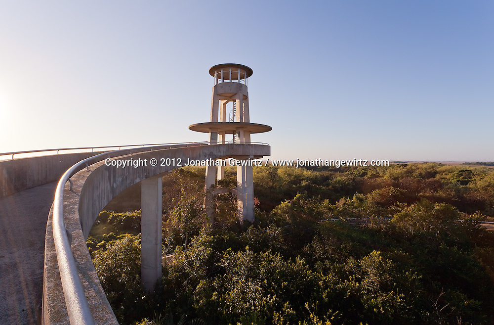 The concrete walkway and observation tower in the Shark Valley section of Everglades National Park, Florida. WATERMARKS WILL NOT APPEAR ON PRINTS OR LICENSED IMAGES.<br /> <br /> Licensing: https://tandemstock.com/assets/80570885
