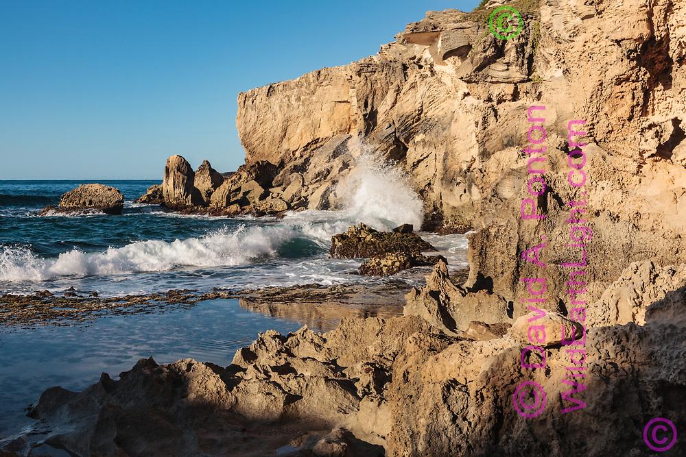 Wave breaks on sea cliffs along the southeastern shore of Kauai, ©  David A. Ponton