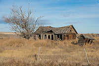 I continue to find that southeast Montana has more photogenic abandoned houses than anywhere else I've been. I could make a whole album of photos. I found this one north of Fort Smith.
