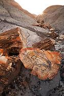 Petrified Forest National Park, Route 66, AZ