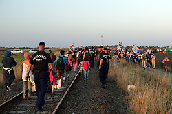 © Gabriel Szabo - Licensed to London News Pictures.Group of migrants meet with the demonstrators from the far-right group Jobbik on the outskirts of the Hungarian bordertown of Röszke on 2nd of September, 2015. The migrants used the situation to flee into the woods, so the far right group protesting against the migrants actually helped them to escape the police<br /> <br /> Photo credit : Gabriel Szabo/LNP