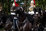 Royal procession for the State Opening of Parliament, London. Accompanied by the Blues and Royals, this procession takes Queen Elizabeth to parliament to deliver the Queen's Speech.